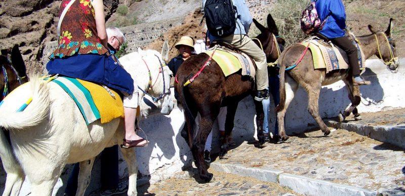 Fără turiști grași pe măgari