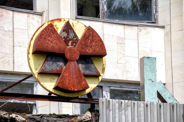 ciupercile găsite la cernobîl