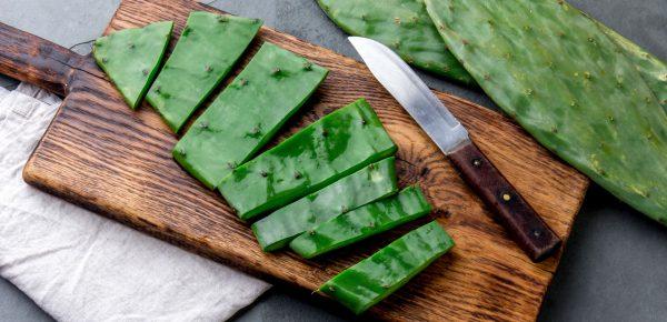 Cactusul – hrană pentru viitor